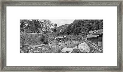 Trees In Jigokudani Monkey Park Framed Print by Panoramic Images