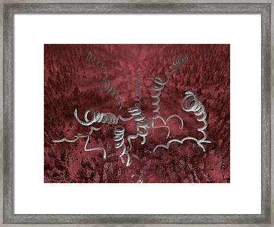 Treponema Pallidum Bacteria Framed Print by Hipersynteza