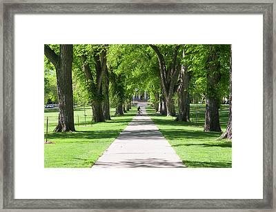 Usa, Co, Fort Collins Framed Print by Trish Drury