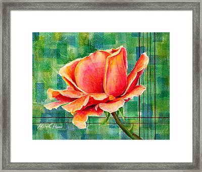 Valentine Rose Framed Print by Hailey E Herrera