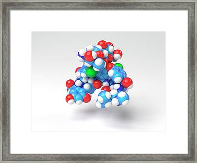 Vancomycin Antibiotic Molecule Framed Print by Indigo Molecular Images