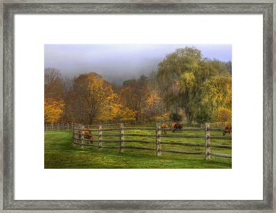 Vermont Farm In Autumn Framed Print by Joann Vitali