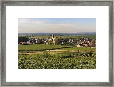 Vineyard And Village Of Pommard. Cote D'or. Route Des Grands Crus. Burgundy. France. Europe Framed Print by Bernard Jaubert