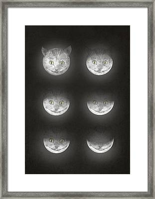 Waning Cheshire Framed Print by Eric Fan