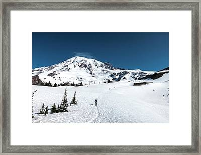 Washington, Mount Rainier Framed Print by Matt Freedman