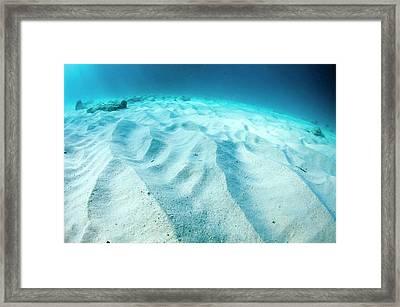 Wave Patterns On Sandy Sea Bed Framed Print by Georgette Douwma