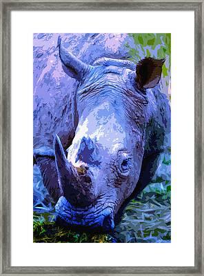 Rhinoceros Framed Print by Brian Stevens