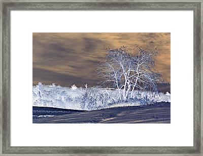 Winter Blues Framed Print by Susan Leggett