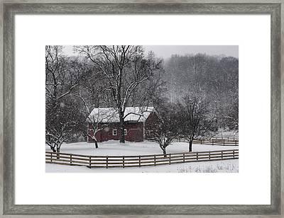 Winter Wonder Framed Print by Ann Bridges