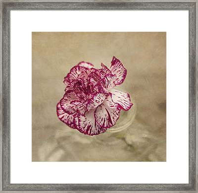 With Love Framed Print by Kim Hojnacki