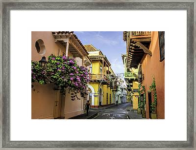Wonderful Spanish Colonial Architecture Framed Print by Jerry Ginsberg