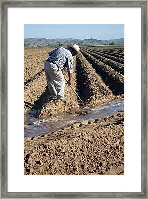 Worker Digging Irrigation Channels Framed Print by Jim West
