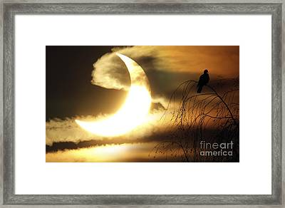 Partial Solar Eclipse, January 2011 Framed Print by Detlev van Ravenswaay