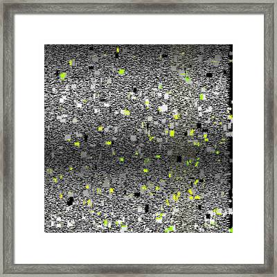 1024.11.3 Framed Print by Gareth Lewis