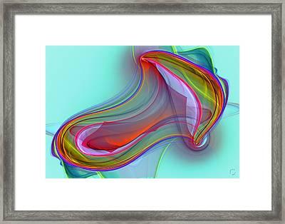 1029 Framed Print by Lar Matre