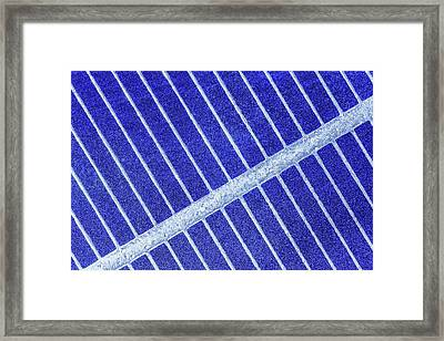 Solar Cell Framed Print by Alfred Pasieka
