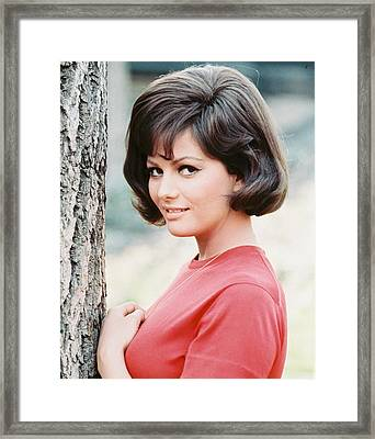 Claudia Cardinale Framed Print by Silver Screen