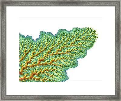 Mandelbrot Fractal Framed Print by Alfred Pasieka