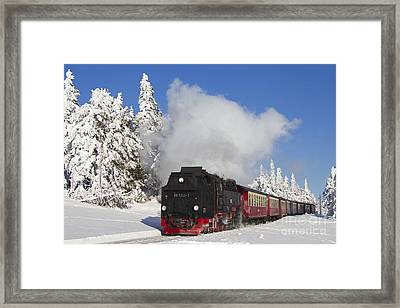 120820p335 Framed Print by Arterra Picture Library