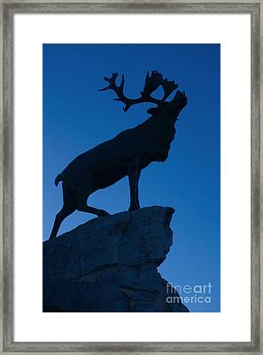 130918p144 Framed Print by Arterra Picture Library