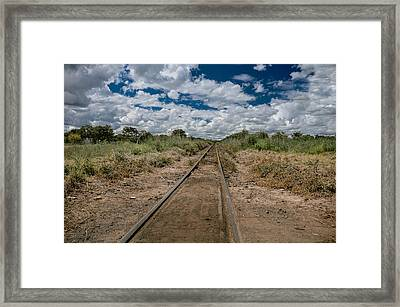 Africa Framed Print by Mihai Ilie