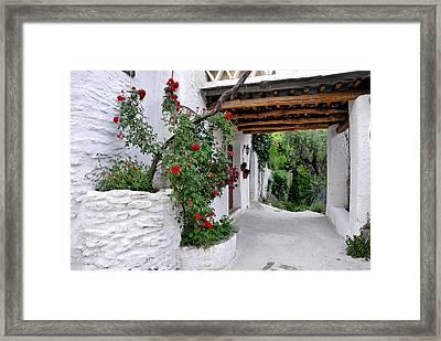 Alpujarras In Granada Framed Print by Guido Montanes Castillo