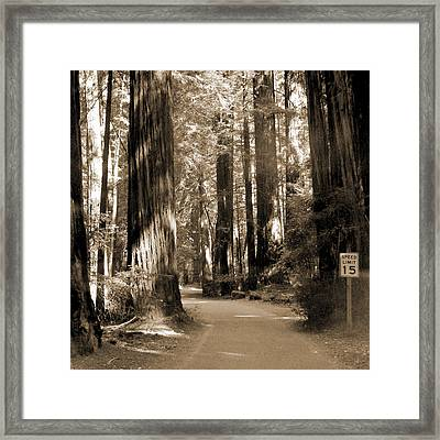 15 Mph Framed Print by Mike McGlothlen