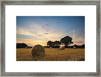 Stunning Summer Landscape Of Hay Bales In Field At Sunset Framed Print by Matthew Gibson