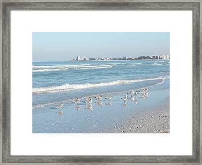 Usa, Florida, Sarasota, Crescent Beach Framed Print by Bernard Friel