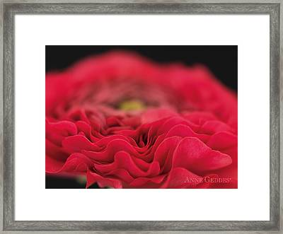 Untitled Framed Print by Anne Geddes
