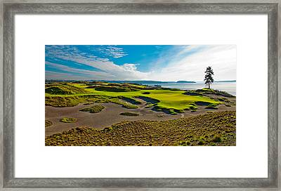 #15 At Chambers Bay Golf Course IIi Framed Print by David Patterson
