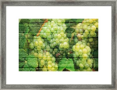 Fruit Framed Print by Joe Hamilton