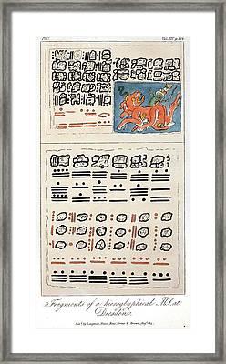 1814 Humboldt Mayan Heiroglyphics Framed Print by Paul D Stewart