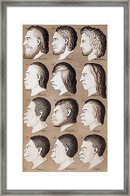 1870 Haeckel Racist Human Illustration Framed Print by Paul D Stewart