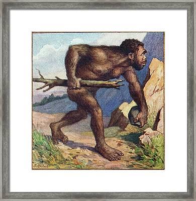 1910 Earliest Colour Neanderthal Print Framed Print by Paul D Stewart