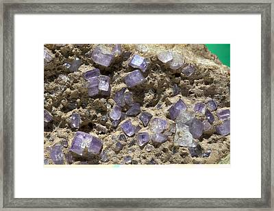 Apatite Crystals Framed Print by Science Photo Library