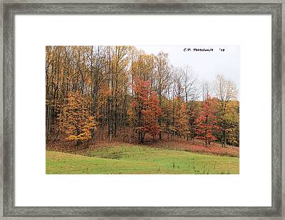 Autumn Color Framed Print by Carolyn Postelwait