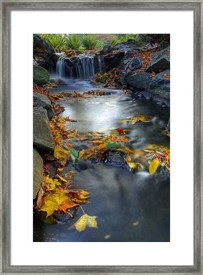 Autumn Creek Framed Print by Matt Dobson