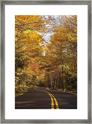Autumn Drive Framed Print by Andrew Soundarajan