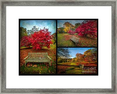 Autumn In The Park Framed Print by Adrian Evans