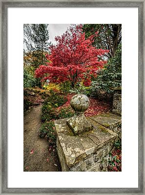 Autumn Path Framed Print by Adrian Evans