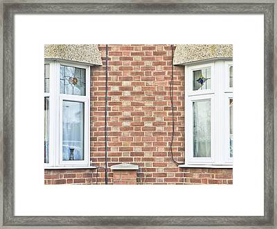 Bay Windows Framed Print by Tom Gowanlock