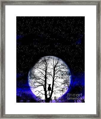 Black Cat On Tree Framed Print by Nina Ficur Feenan
