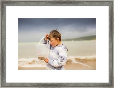 Boy Holding Crab Framed Print by Samuel Ashfield