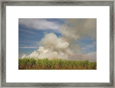 Burning Sugar Cane Framed Print by Jim West