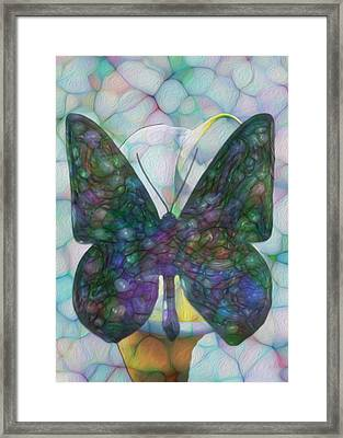 Butterfly Framed Print by Jack Zulli