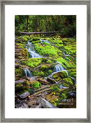 Cascading Waterfall Framed Print by Elena Elisseeva