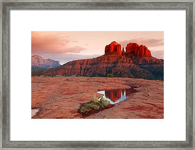 Cathedral Rock Reflection Framed Print by Alexey Stiop