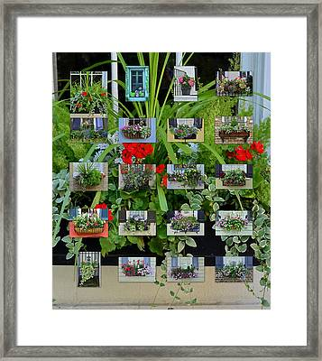 Charleston Flower Boxes Collage 2 Framed Print by Allen Beatty