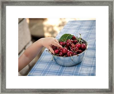 Cherries Framed Print by Viktor Pravdica